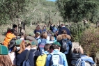 Gruppo Scout Taranto e AC in masseria_08