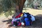 Gruppo Scout Taranto e AC in masseria_15