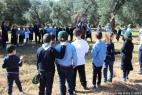 Gruppo Scout Taranto e AC in masseria_17