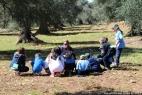 Gruppo Scout Taranto e AC in masseria_20