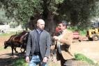 Gianpaolo Cassese e Fabrizio Gatta in mezzo agli ulivi secolari della bellissima collina ricoperta di ulivi della Masseria del Duca