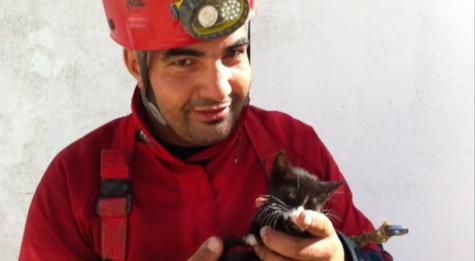 Gianni Grassi con il gattino Teo